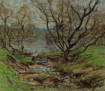 Willows in Spring